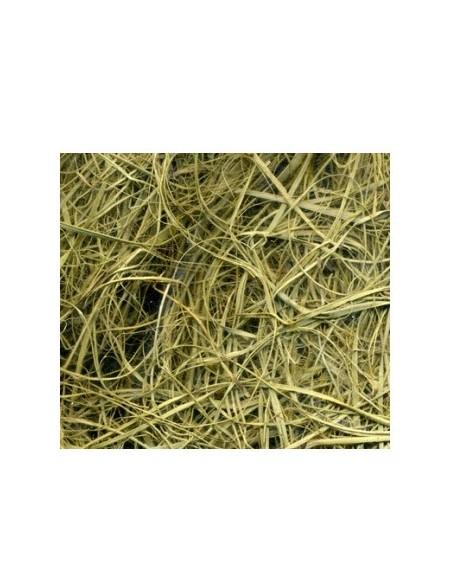 Crin végétal supérieur - Paquet de 25 KG